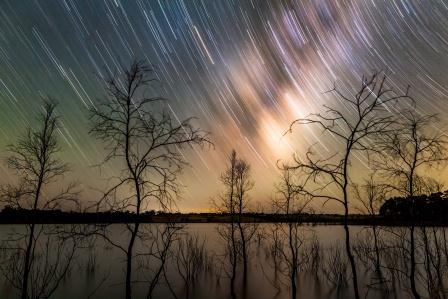 Phil Hart's 'Milky Way Star Trails over Lake Eppalock' (Photo: Phil Hart)